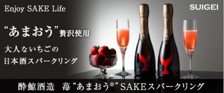 藤巻百貨店×酔鯨酒造
